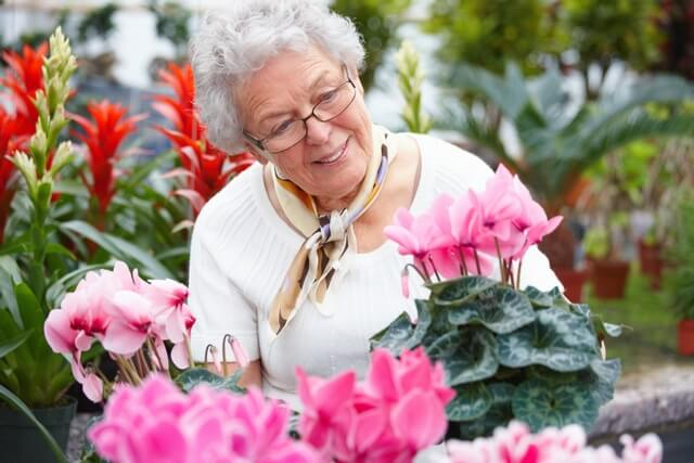 Effective-Forms-of-Stress-Relief-for-Senior-Citizens