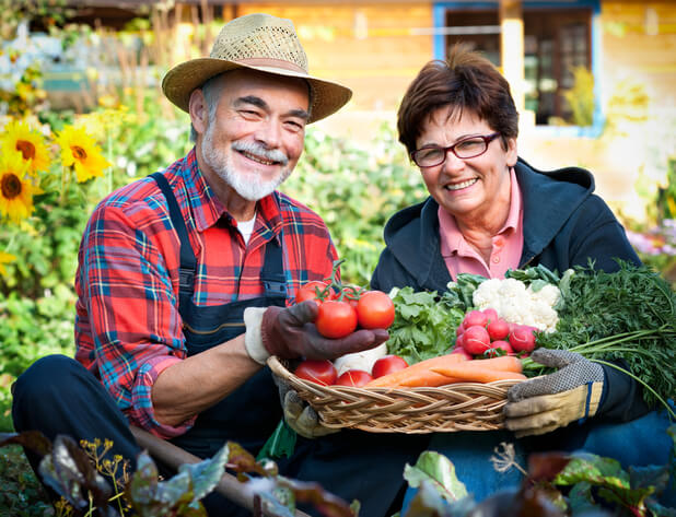 venture-into-gardening-you-will-reap-wonderful-benefits-from-it